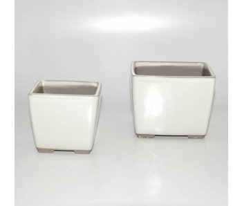 Set of two white pots