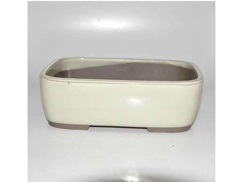 Bonsai pot creme 25 cm Seto Yaki