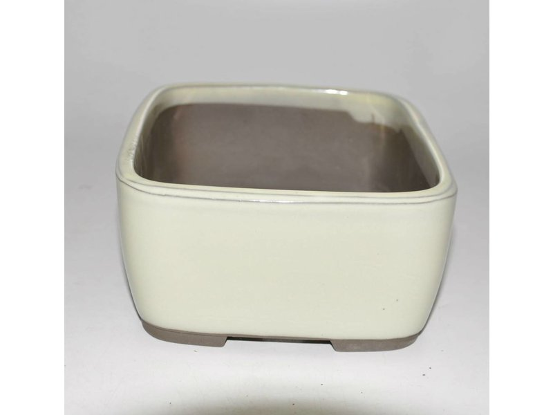 Bonsai pot crema 22,5 cm Seto Yaki