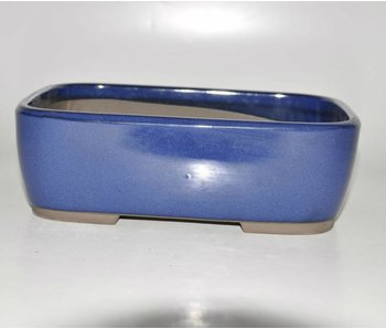 Bonsai pot blu 25 cm Seto Yaki