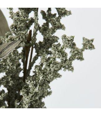 Lene Bjerre Sage florisia flower