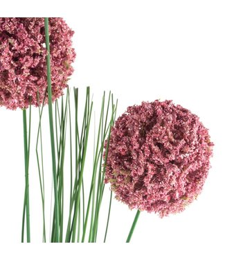 Grand Illusions Dark pink allium spray