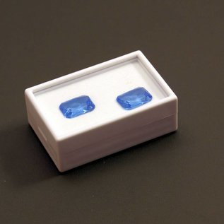Glass lid box with insert foam