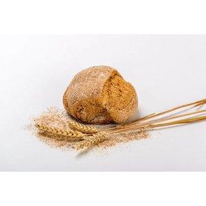 Tarwe Volkoren Brood klein van 100 % locale tarwe geteeld in de Bommelerwaard