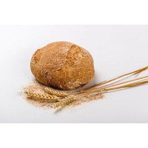 Tarwe Volkoren brood Groot van 100% locale tarwe geteeld in de Bommelerwaard