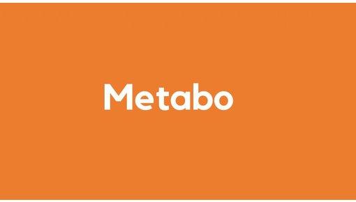 Acculader voor Metabogereedschap