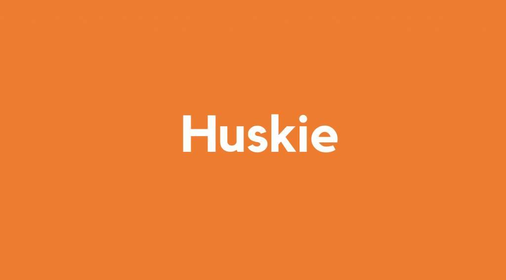 Accu voor Huskie
