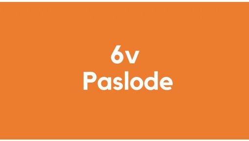 6v accu voor Paslode gereedschap