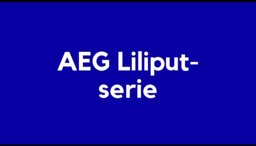 Accu voor AEG Liliput-serie elektrische en robotstofzuigers