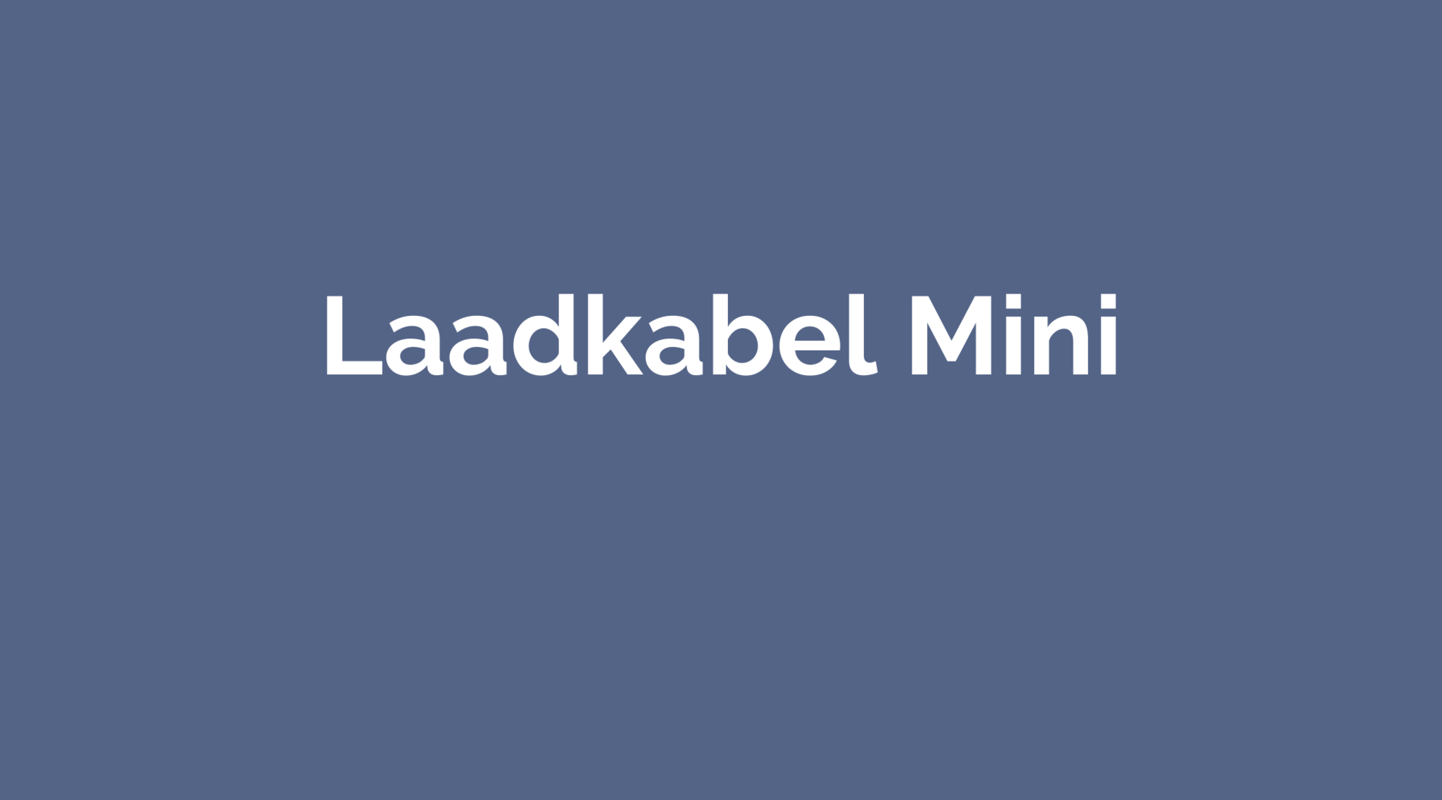 Laadkabel Mini