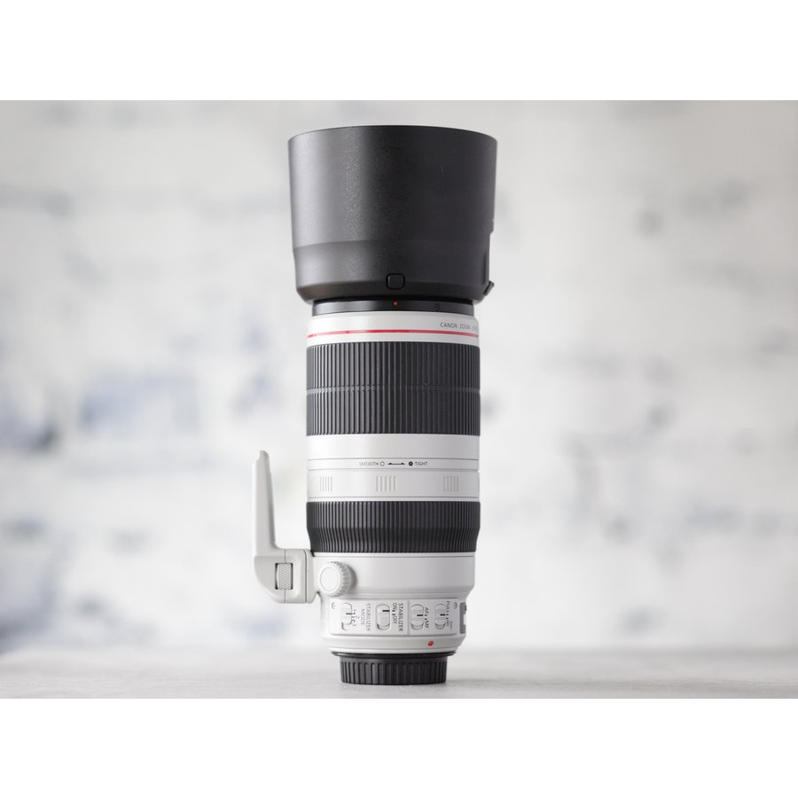 Canon EF 100-400mm f/4.5-5.6L IS II USM-4