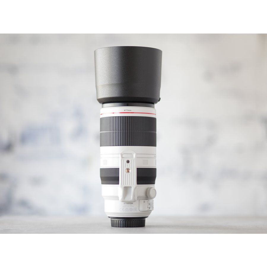 Canon EF 100-400mm f/4.5-5.6L IS II USM-5