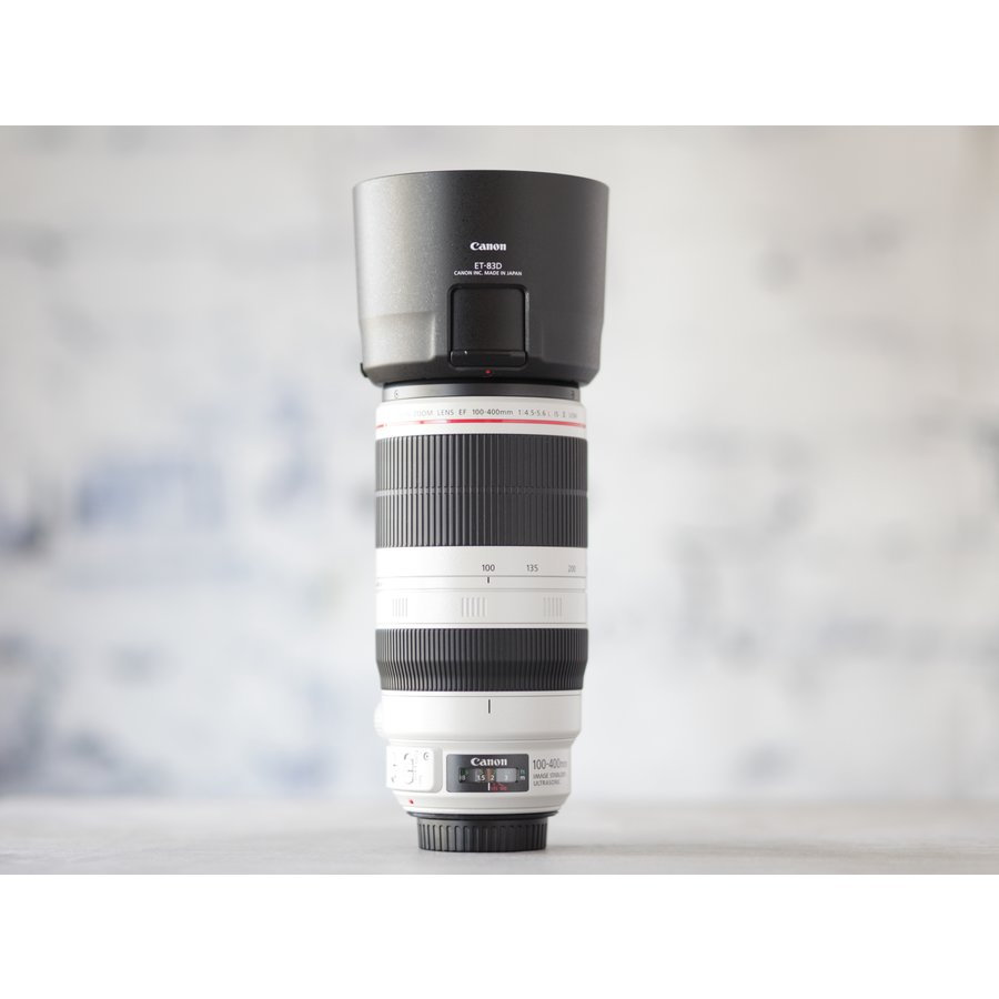 Canon EF 100-400mm f/4.5-5.6L IS II USM-2