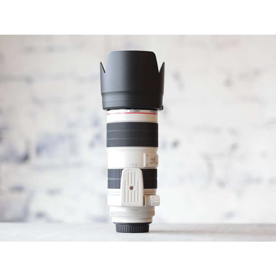 Canon EF 70-200mm f/2.8L IS II USM-5