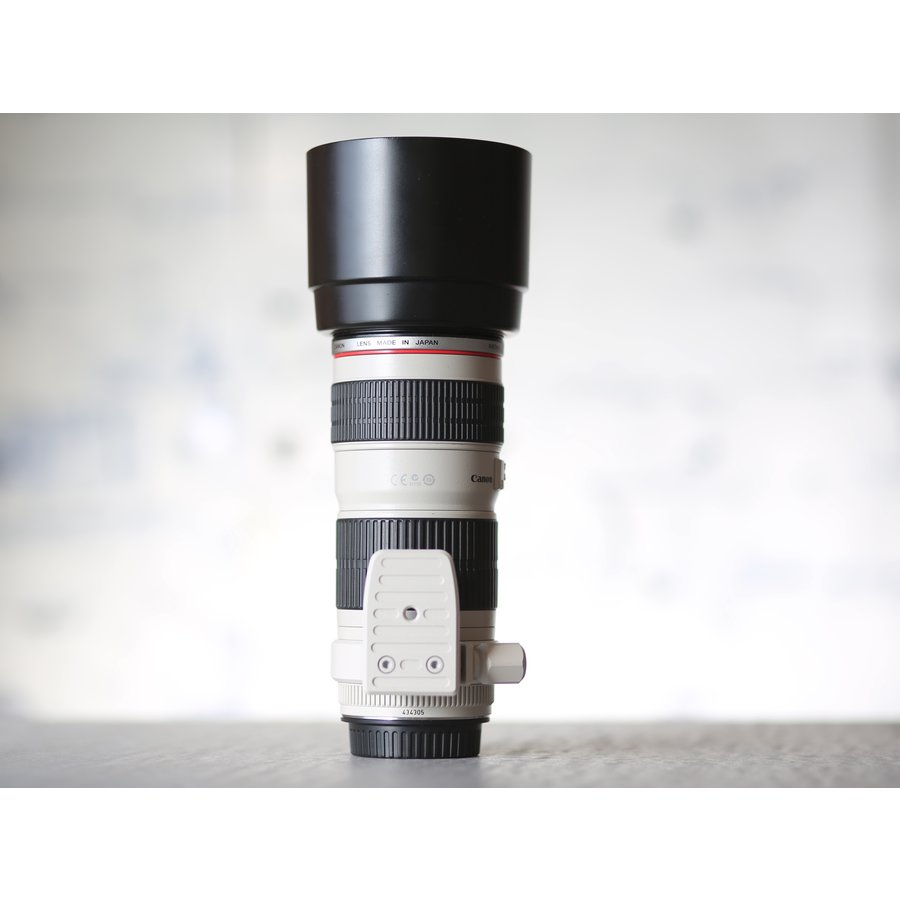 Canon EF 70-200mm f/4L USM-2