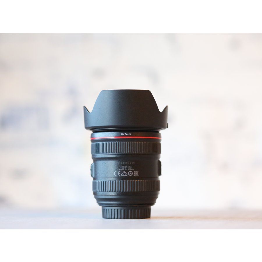 Canon EF 24-70mm f/4L IS USM-3