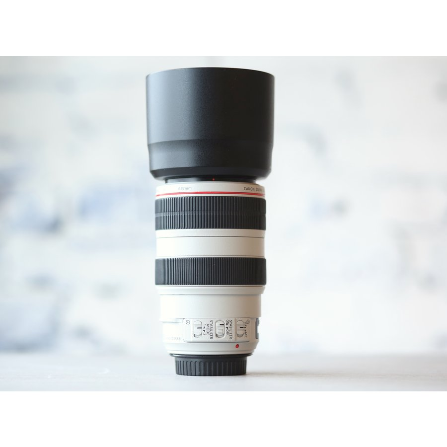 Canon EF 70-300mm f/4-5.6L IS USM-2