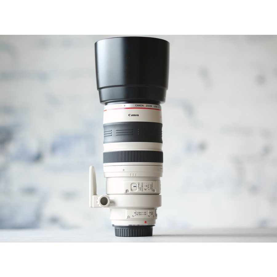 Canon EF 100-400mm f/4.5-5.6L IS USM-4