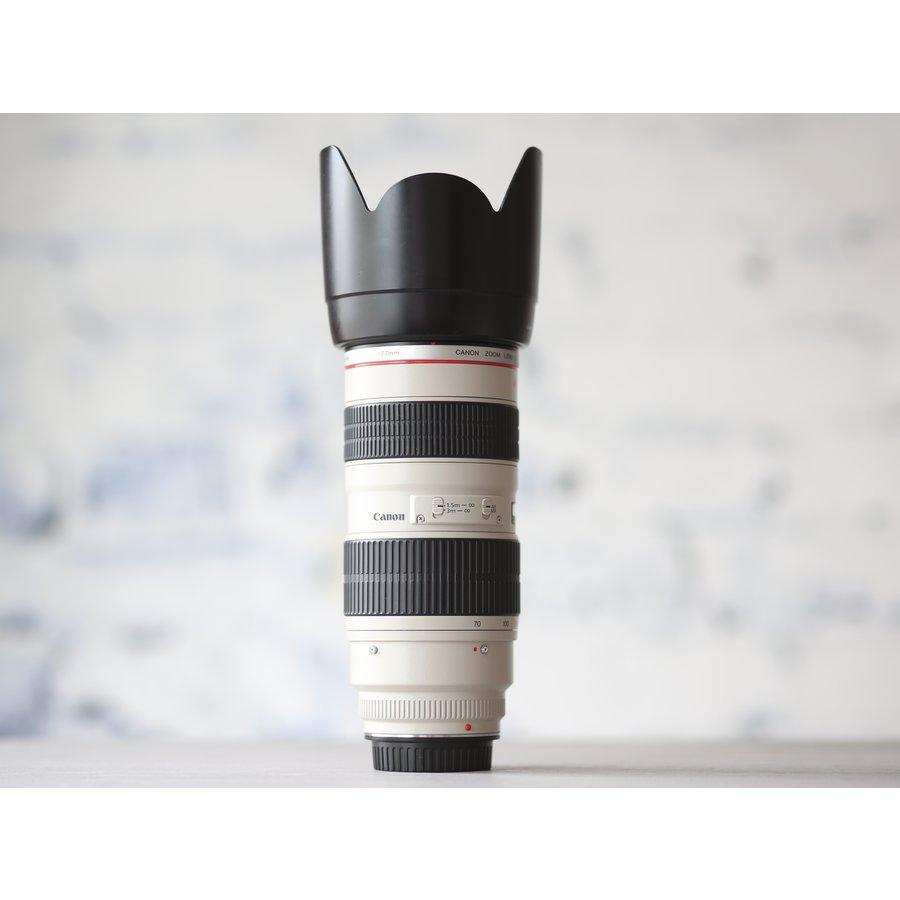 Canon EF 70-200mm f/2.8L USM-3