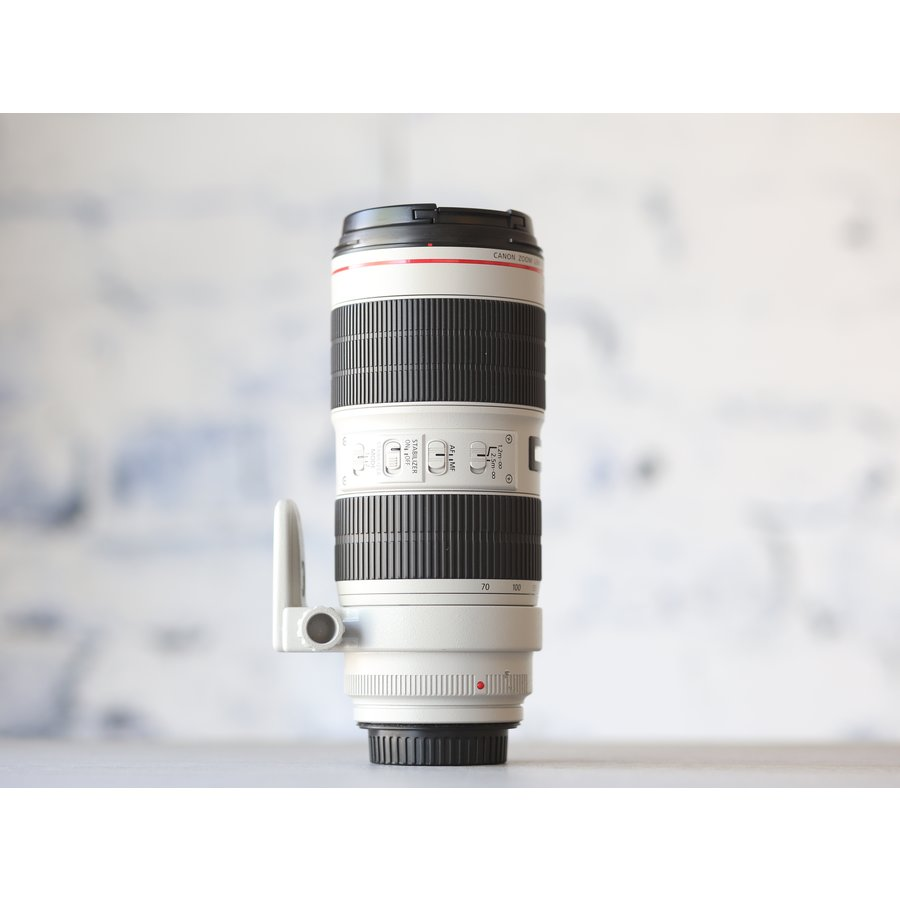 Canon EF 70-200mm f/2.8L IS III USM-4
