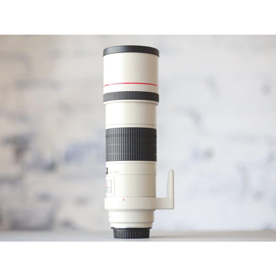 Canon EF 300mm f/4L IS USM-4