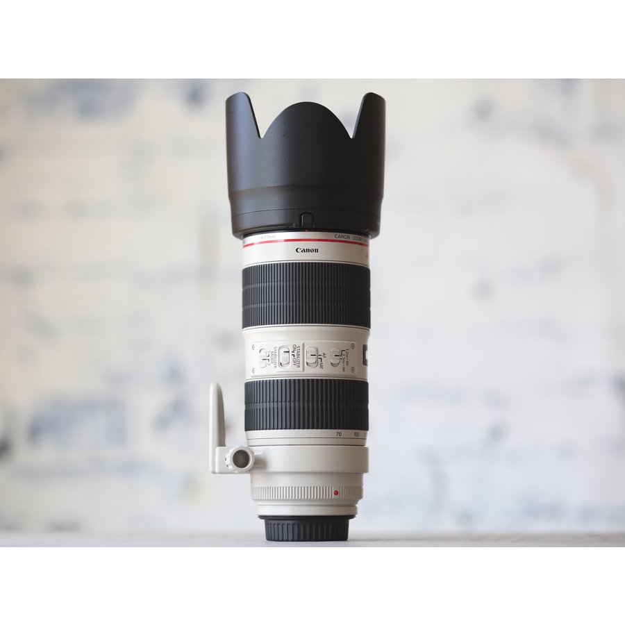 Canon EF 70-200mm f/2.8L IS II USM-4