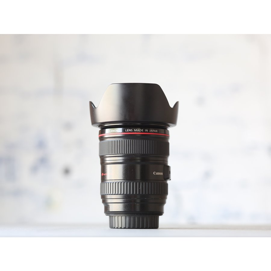 Canon EF 24-105mm f/4L IS USM-2