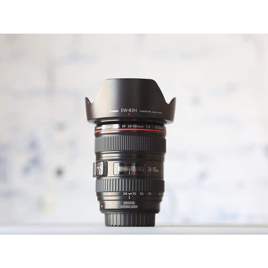 Canon EF 24-105mm f/4L IS USM-1