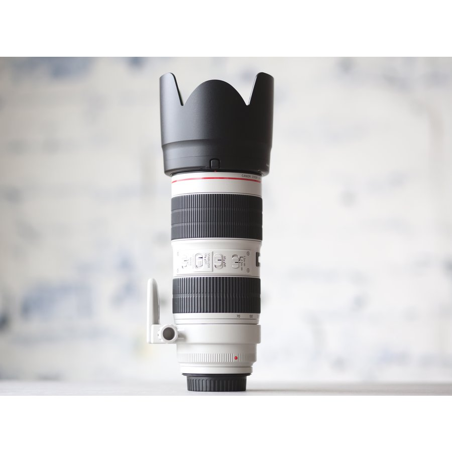 Canon EF 70-200mm f/2.8L IS III USM-3