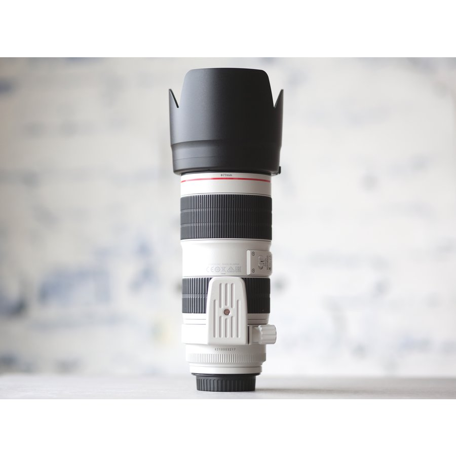 Canon EF 70-200mm f/2.8L IS III USM-5