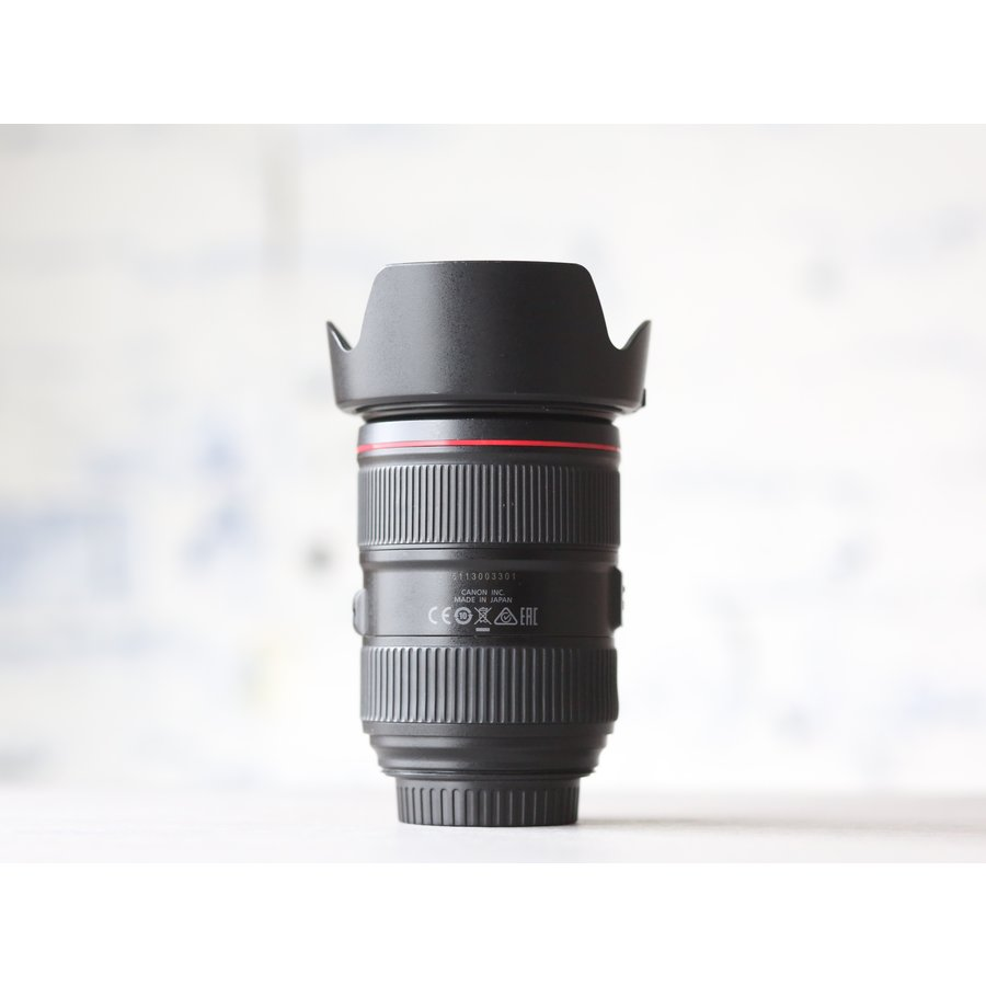 Canon EF 24-105mm f/4L IS II USM-3