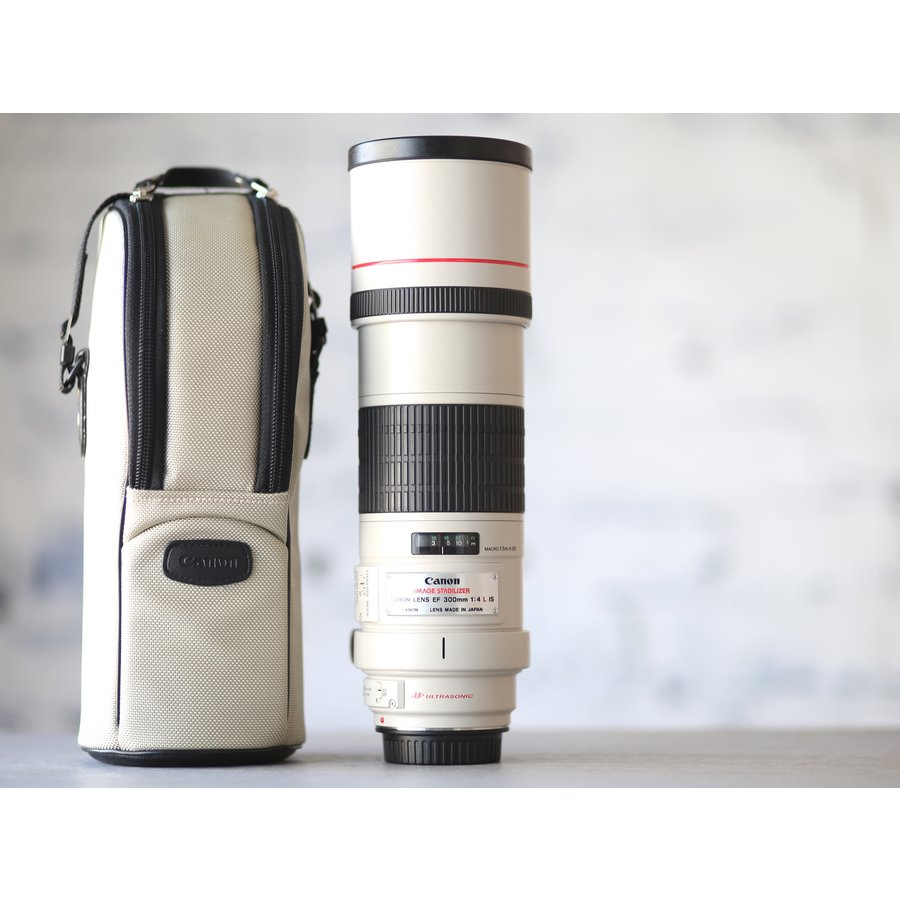 Canon EF 300mm f/4L IS USM-1