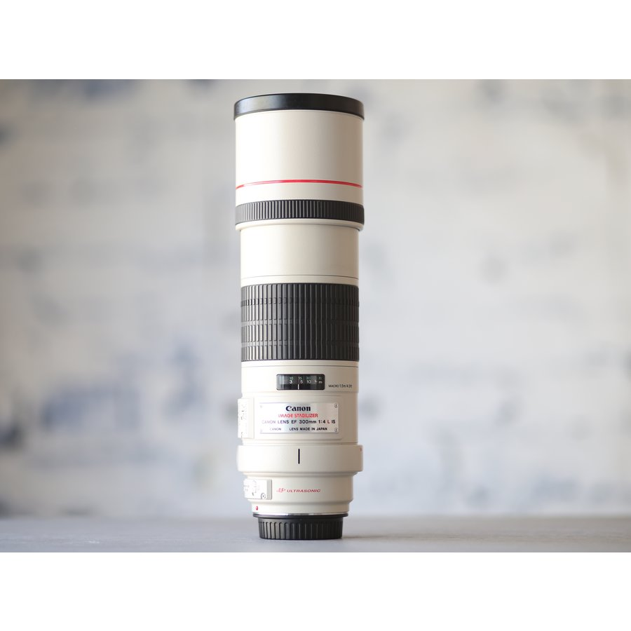 Canon EF 300mm f/4L IS USM-2