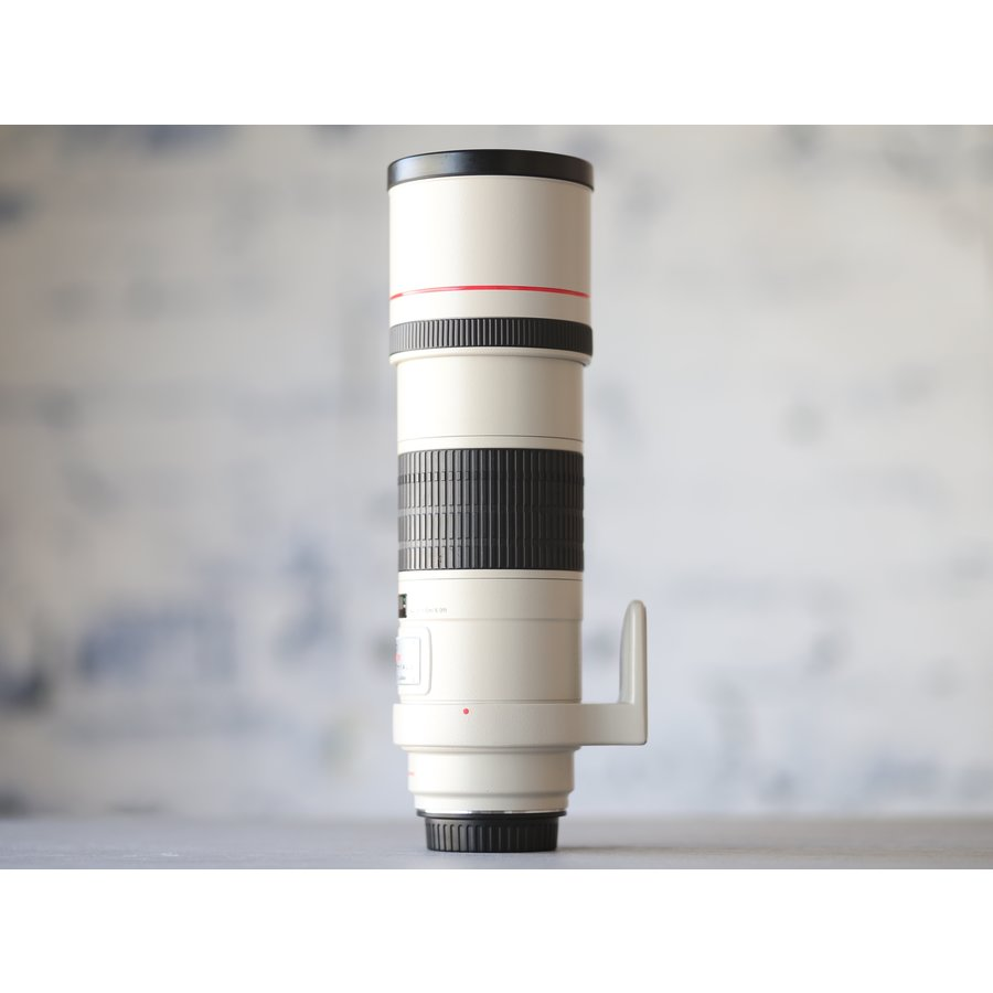 Canon EF 300mm f/4L IS USM-3