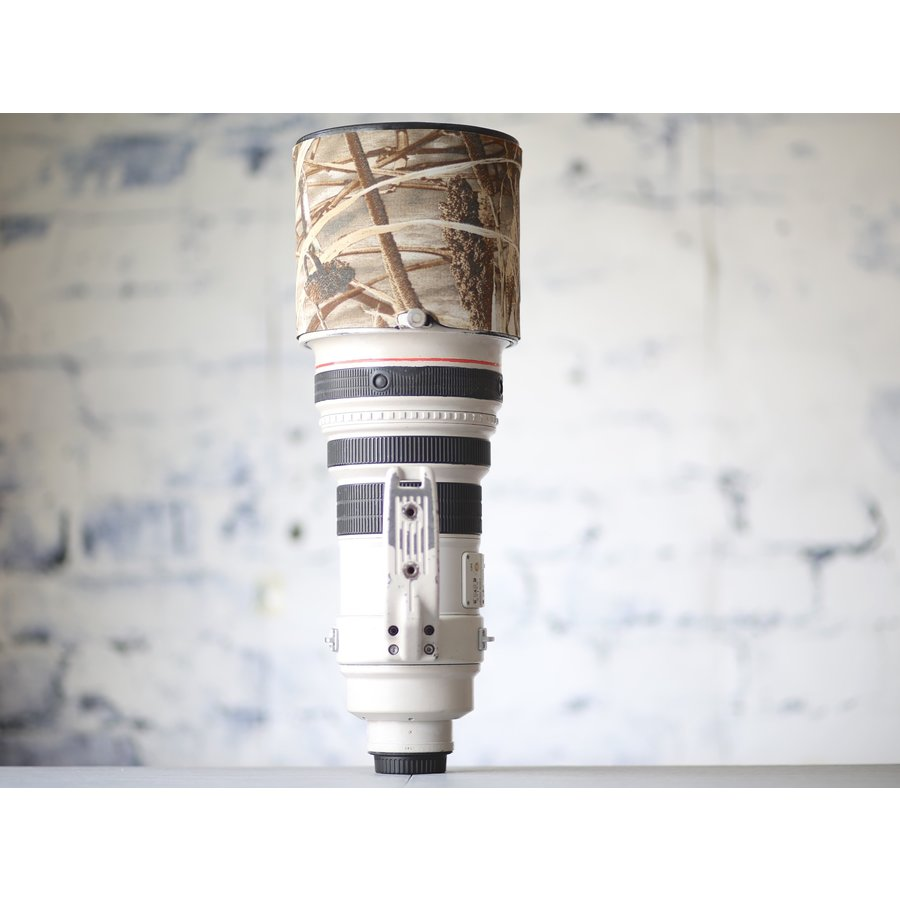 Canon EF 400mm f/2.8L IS USM-5