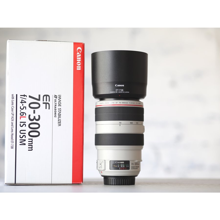 Canon EF 70-300mm f/4-5.6L IS USM-1