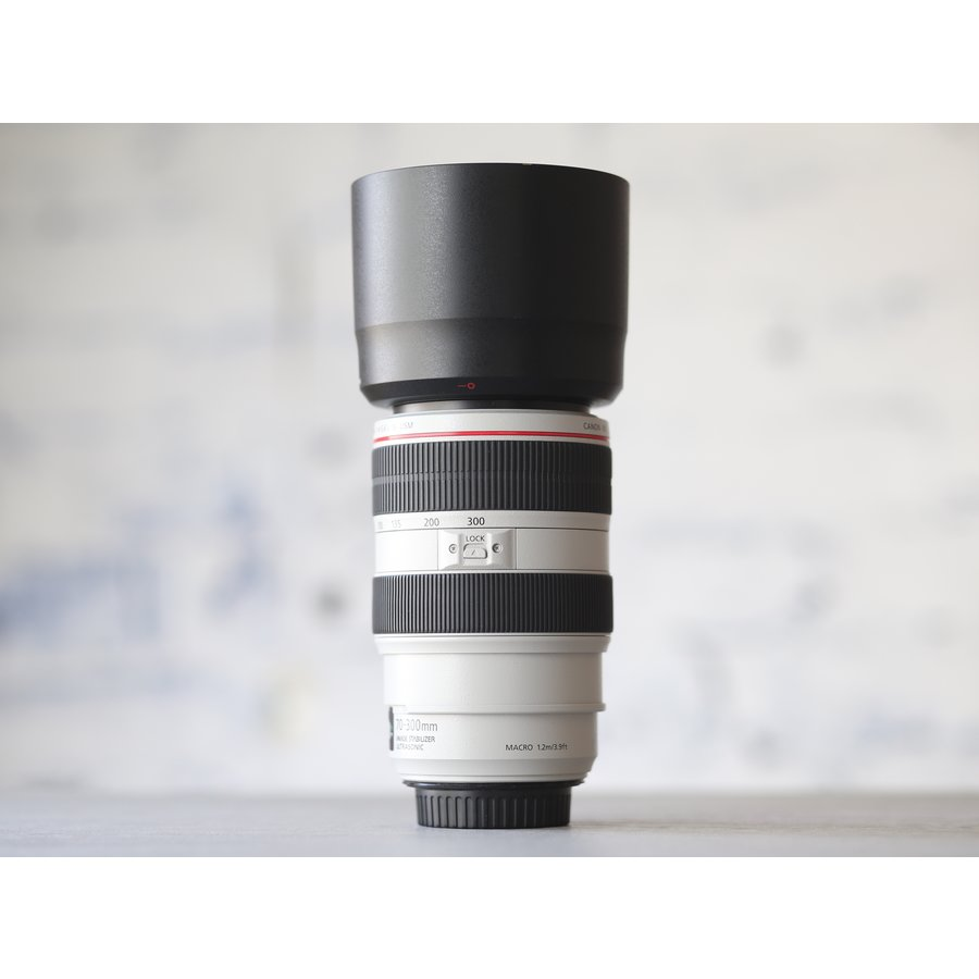 Canon EF 70-300mm f/4-5.6L IS USM-3