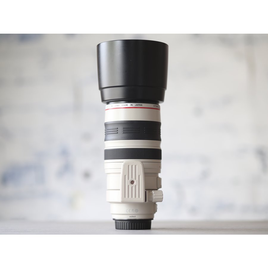 Canon EF 100-400mm f/4.5-5.6L IS USM-5