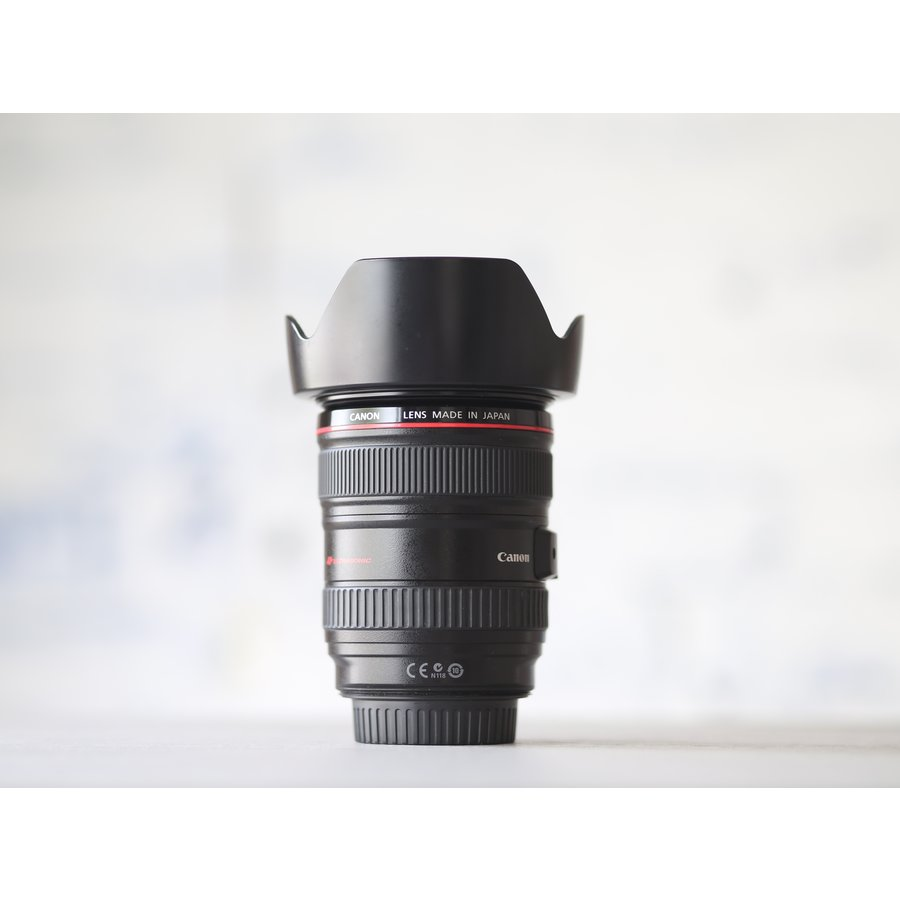 Canon EF 24-105mm f/4L IS USM-3