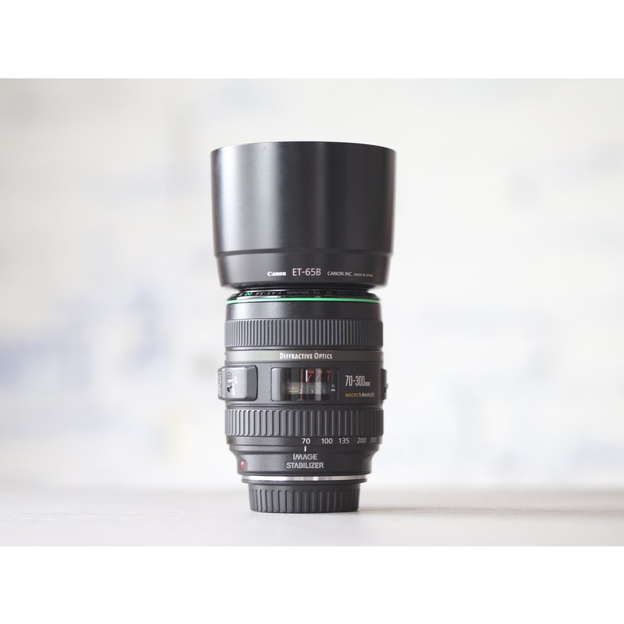 Canon EF 70-300mm f/4.5-5.6 DO IS USM-2