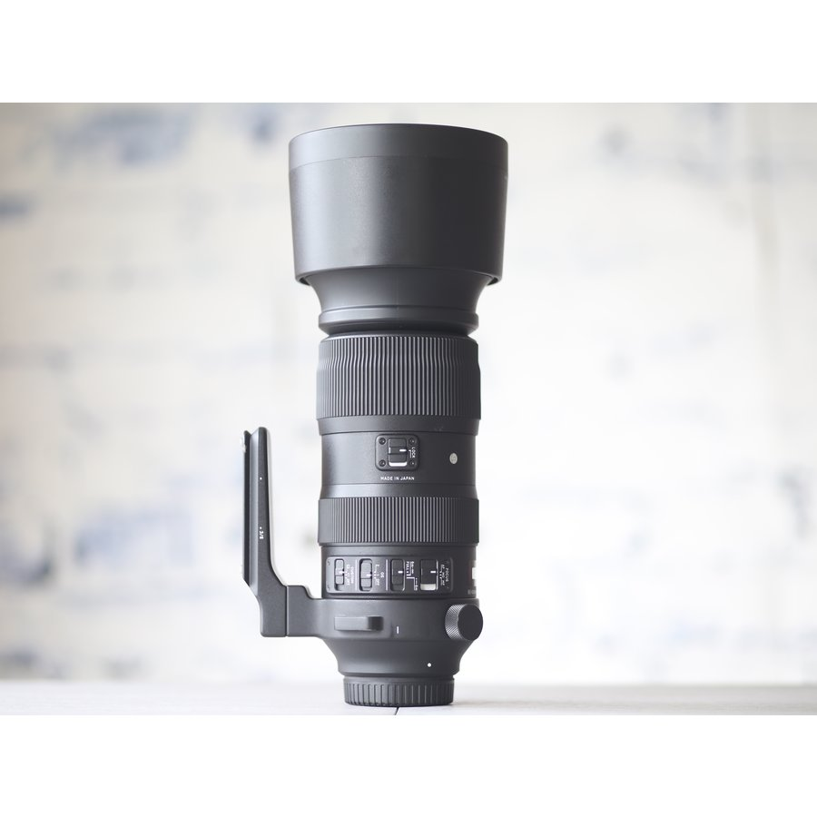 Sigma 60-600mm f/4.5-6.3 DG OS HSM Sports (Canon)-4