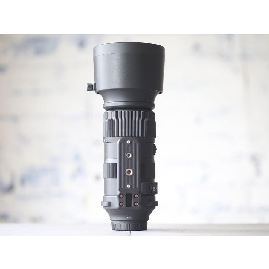 Sigma 60-600mm f/4.5-6.3 DG OS HSM Sports (Canon)-5