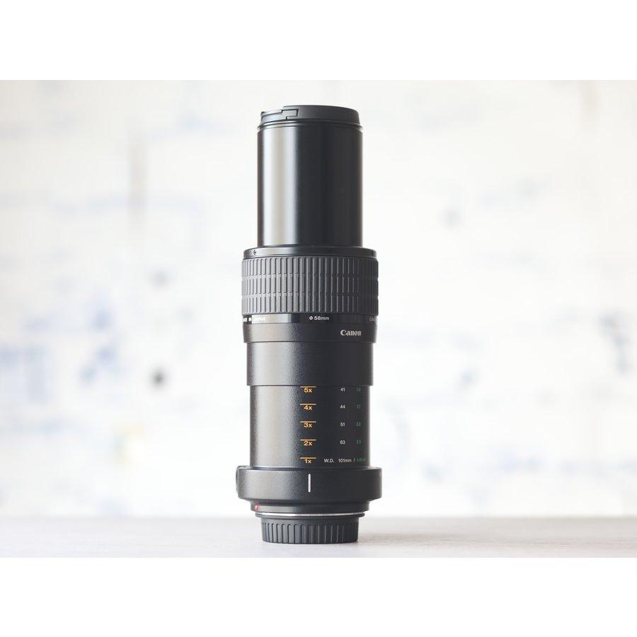 Canon MP-E 65mm f/2.8 1-5x Macro-3