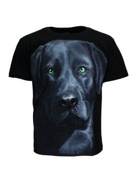Rock Eagle / Biker T-Shirts Dog 3D T-Shirt