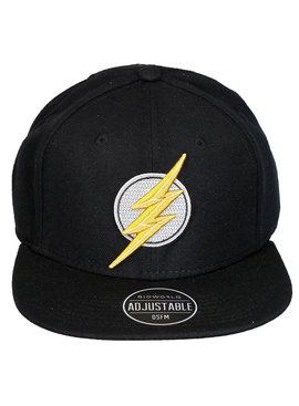 The Flash DC Comics The Flash Logo Snapback Cap Pet
