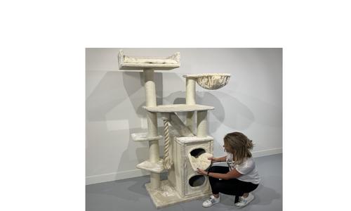 Cat Penthouse