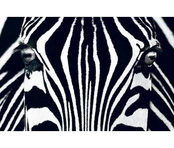 Fotobehang Poster XXL noir et blanc I 175x115 cm