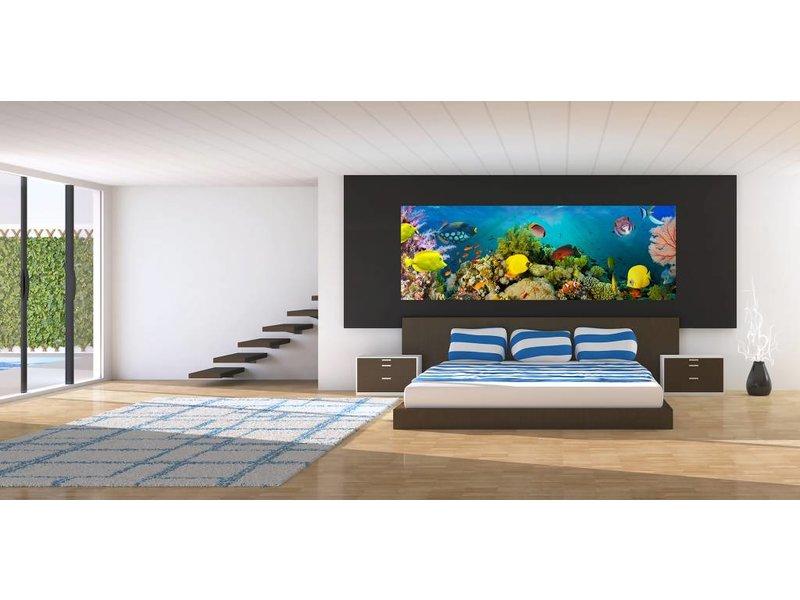 Fotobehang Seekorallen 366x127 cm