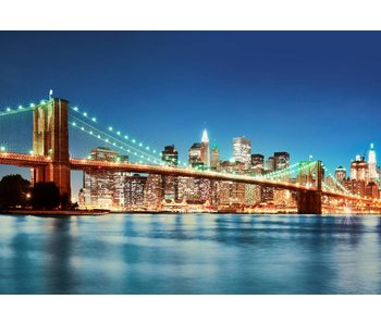 Fotobehang New York East River 366x254 cm