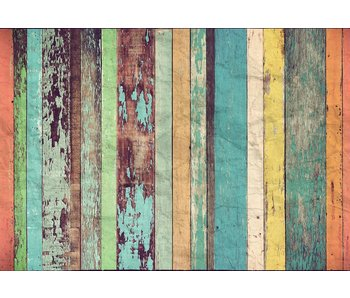 Fotobehang Colored Wooden Wall 366x254 cm